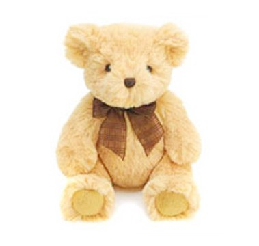 soft toy, teddy bear