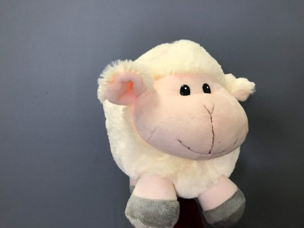 soft toys, teddy bear, baby toy, baby gift, gift, baby flowers, tamworth florist