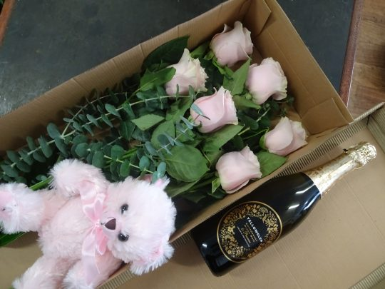 roses, teddy, champagne, valentines, pink rose, tamworth flowers, tamworth florist, valentines day delivery