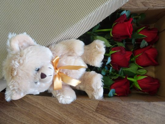 red rose, red roses, roses, valentiens day, rose delivery, flower delivery