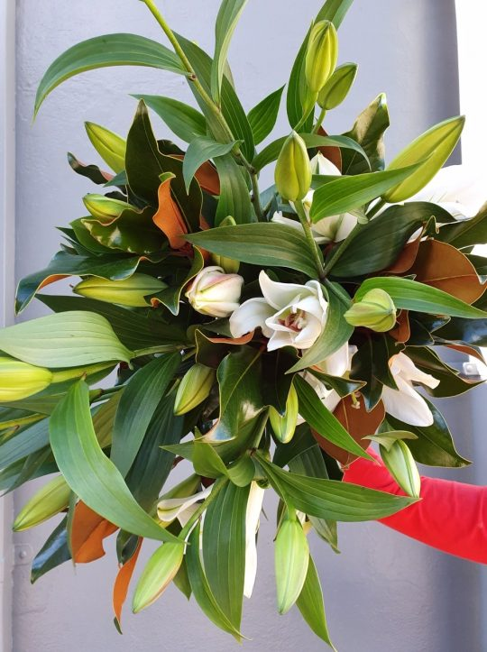 lily, oriental lily, lily bouquet, mothers day flowers tamworth, mothers day tamworth, mothers day gifts, lily bouquet, classic bouquet, send love, flowers for any occasion, sympathy, birthday, mothers day, boutique florist, real florist, local florist, shop local,