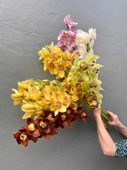 cymbidium orchid bouquet, orchid, flower special, flower delivery, tamworth flowers, tamworth florist, flowers tamworth, flower delivery,