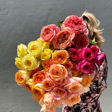 mixed rose bouquet, rose bouquet, roses, rose delivery, tamworth flower shop, flower shop tamworth, Tamworth florist